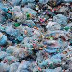 Toda la información sobre la reducción del consumo de bolsas de plástico
